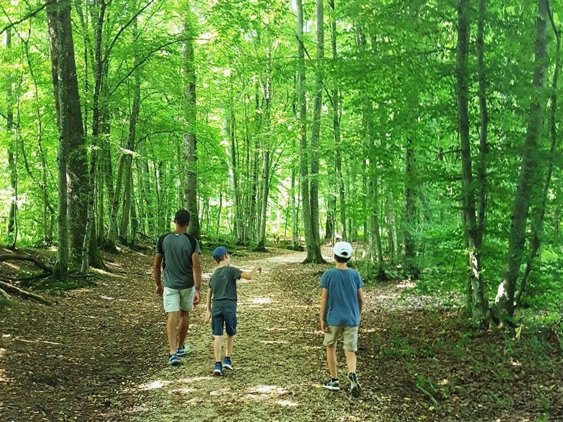 gite-hautvillers-randonnée-nature