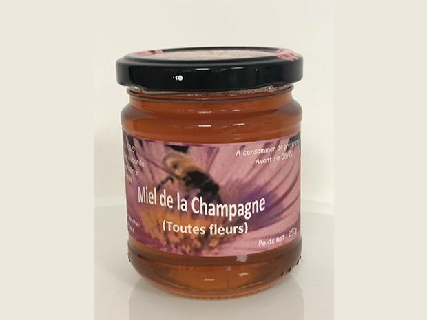 miel-toutes-fleurs-miel-artisanal-champagne copie