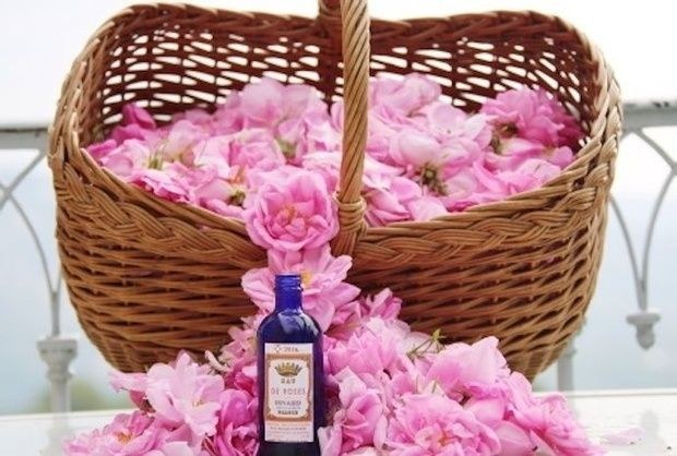 Grasse-parfums-fleurs