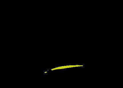 logo-noir-wolf-movement