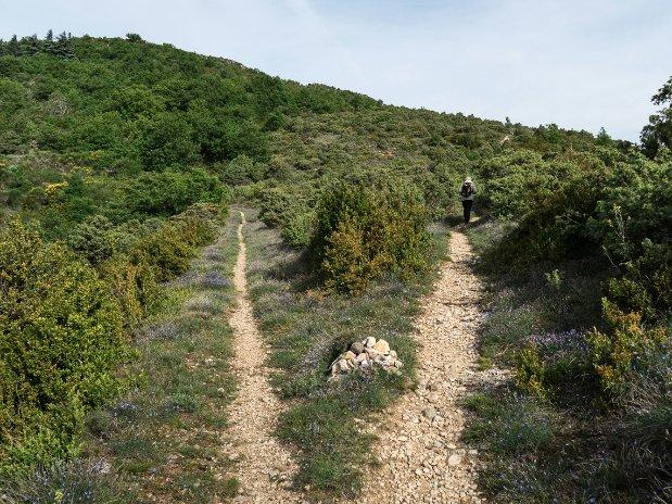 randonnée-Ardèche-gîte à Meysse