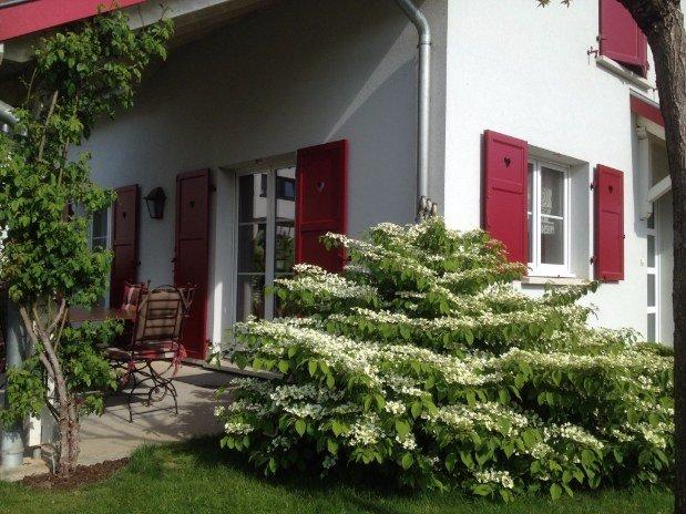 Au-bonheur-apprivoisé-Gîte-Alsace-Eguisheim-route-des-vins-Jardin