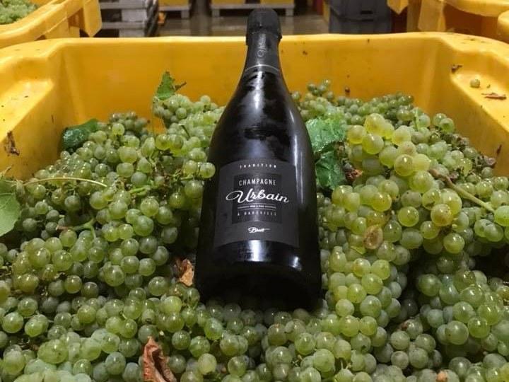 baroville-champagne-urbain-pere-fils-bouteille-raisin