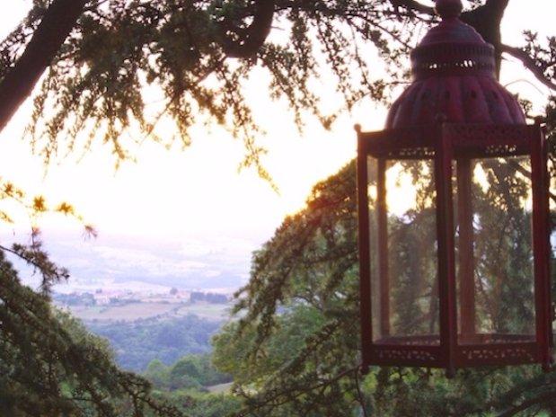 Détail paysage depuis cabane sur les arbres Domaine des grands Cèdres