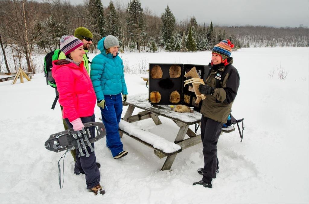 parc-national-mont-orford-raquette