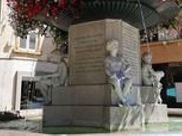 hotel-centre-ville-avec-piscine-en-salon-provence-fontaine-statue-fleur