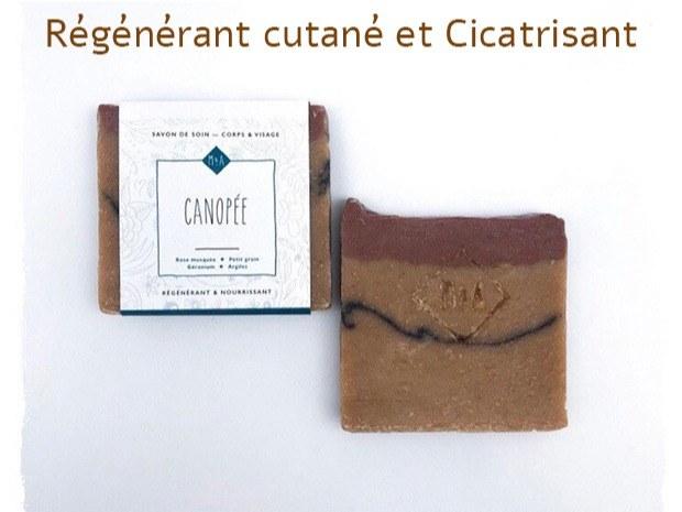canopée1