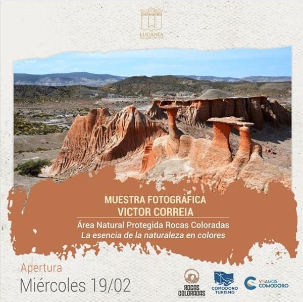 Expo Vcorreia
