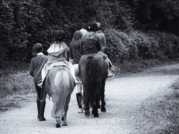 Randonné à cheval
