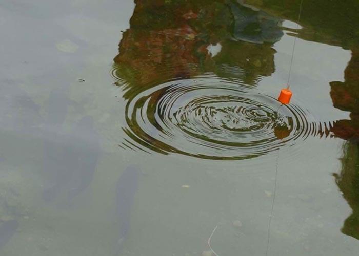 La-pêche-aux-truites1.4