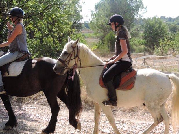 Camping l olivier - pont du gard - Nimes camargue