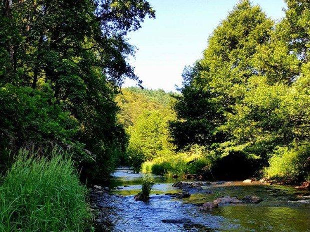 Gorges sauvages de la rivière