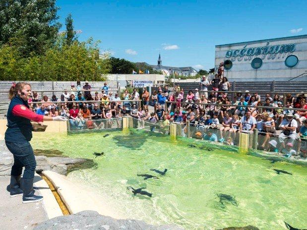 villa-bettina-la-baule-ussim-vacances-ocearium-croisic-poissons-bassin