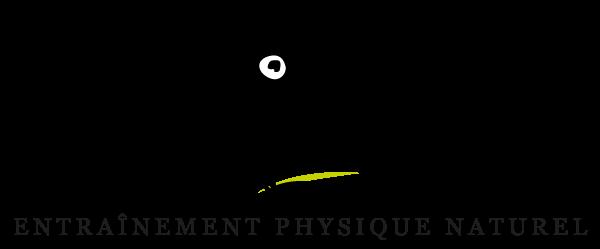 logo-wolf-movement