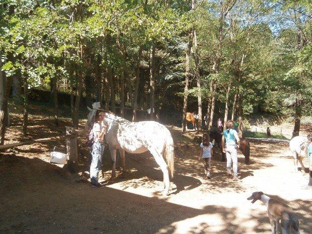 centre equestre vergier camping de retourtour 4 etoiles ardeche riviere piscine