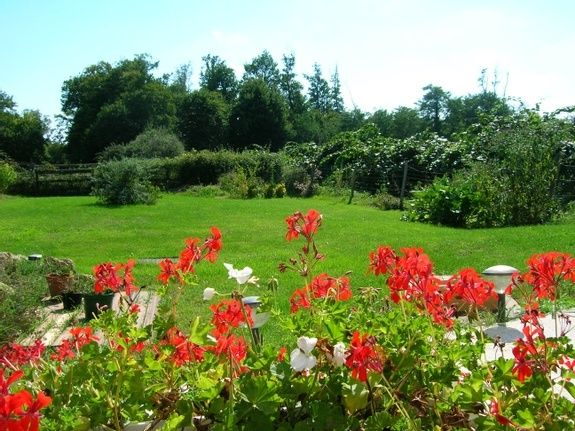 vue jardin avec fleurs