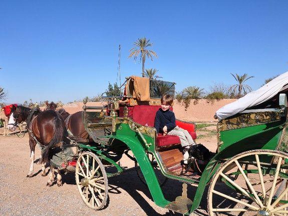 carriage ride - marrakech - morocco - city tours