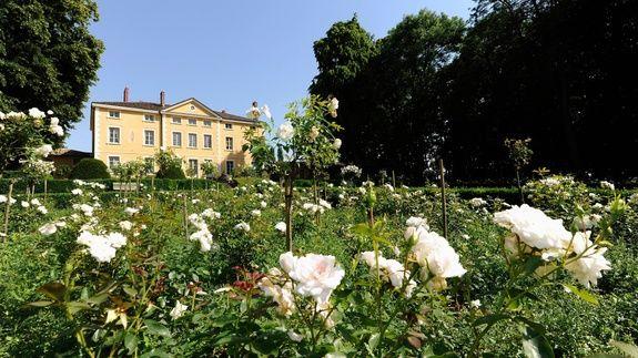 location-château-pour-mariage-chambre-lit-chavagneux-rose-fleur-facade-arbre-ciel