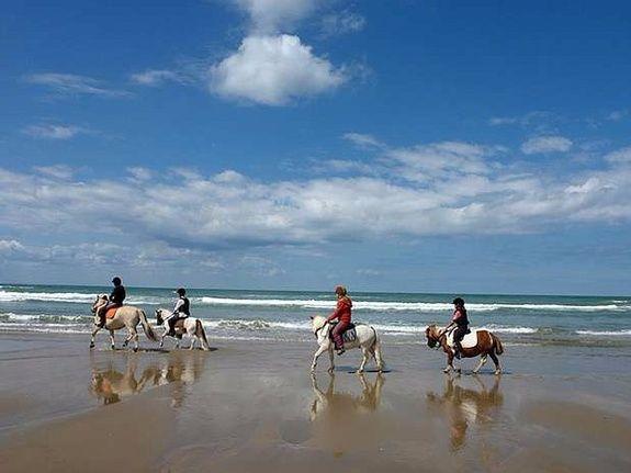Randonnées-équestres-Saint-Malo-Cancale-Bretagne-mer
