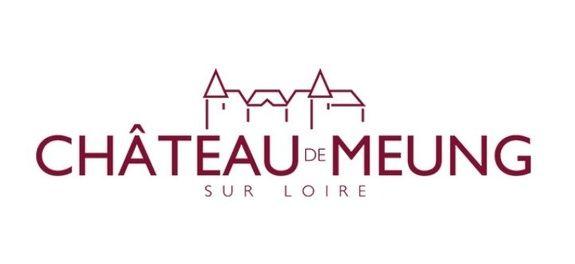 lidar-topographie-reference-chateau-de-meung
