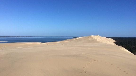 dune du pilat camping les arbousiers