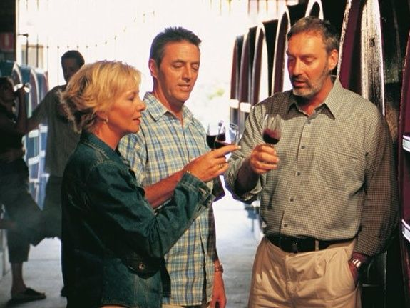 camping Le Clapas wine tasting in the cellar (Gaillac)