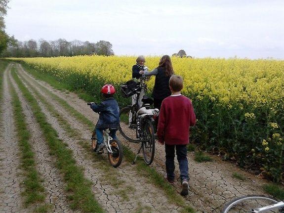 Promenade vélos