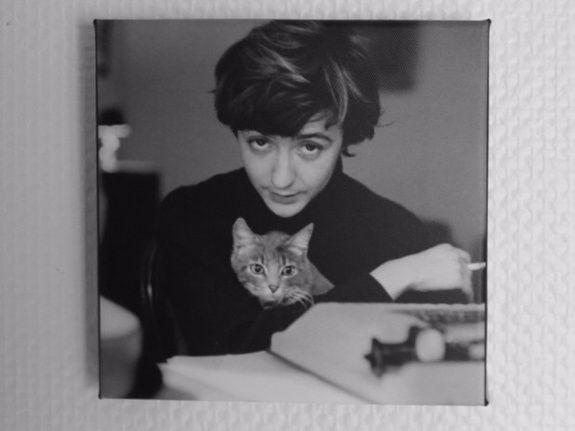 Chambre les maronniers de Françoise Sagan