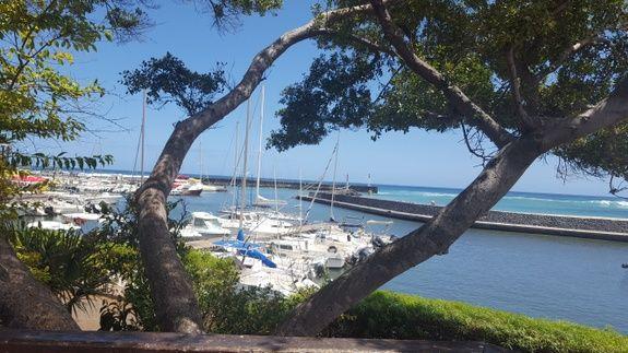 location-saisonniere-reunion-particulier-eden-appartement-mer-bateau-arbre-ile