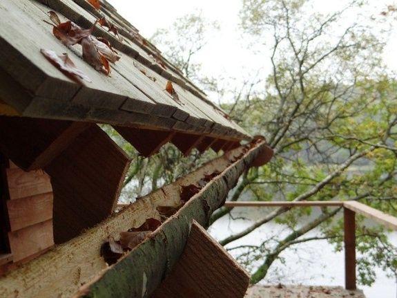 Cabane de l'Engoulevent détail