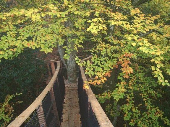 Cabane de la Charbonnière pont