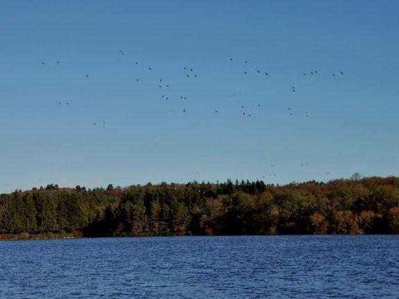Cabane du Saut du Chevreuil vue paysage lac
