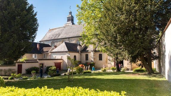gite-hautvillers-abbaye-arbre-champagne