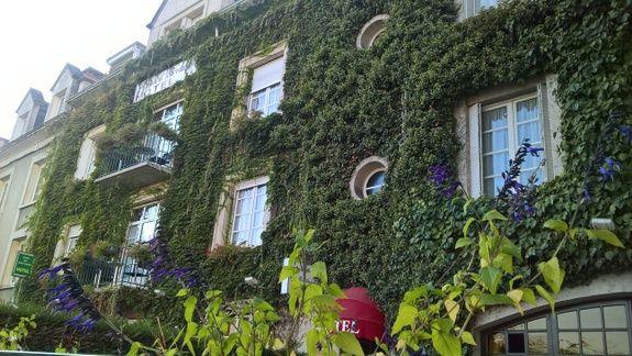 hotel-anne-de-bretagne-blois-façade-liere