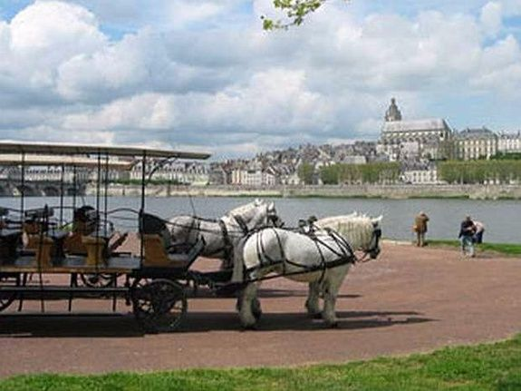 hotel-blois-centre-anne-de-bretagne-caleche-promenades-à-cheval