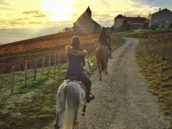 gite-hautvillers-cheval-nature