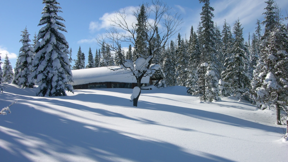 chalets-monts-valin-neige-hiver-or-blanc