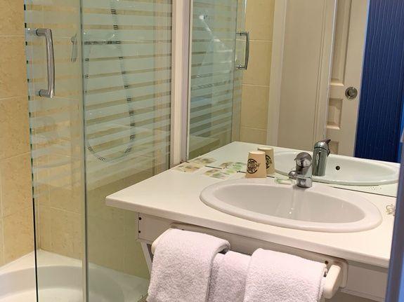 hotel-anne-de-bretagne-blois-centre-ville-chambre-double-superieure-douche