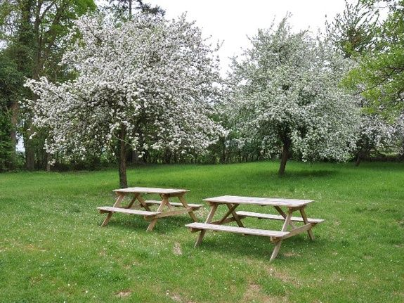 gite-lac-du-der-parc-fleurs