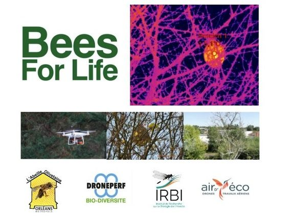 lidar-topographie-imagerie-aerienne-bees-for-life