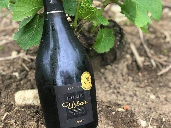 baroville-champagne-urbain-pere-fils-bouteille