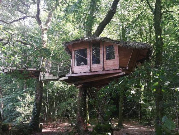 Cabane du Tapis d'Or