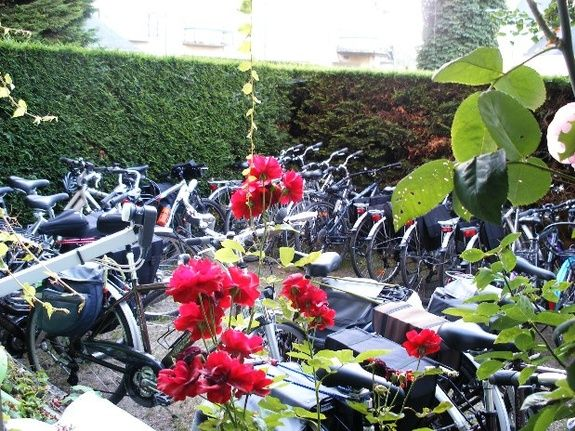hotel-blois-centre-anne-de-bretagne-parking-velos